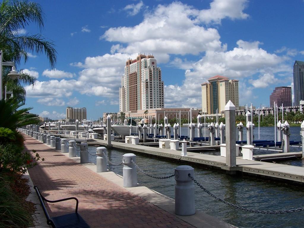Baía de Tampa